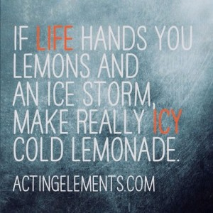 If Life Hands You Lemons